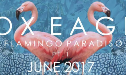 Electro-Psych Pop Duo Release New Single | Vox Eagle – 'Come Over' | @voxeagle