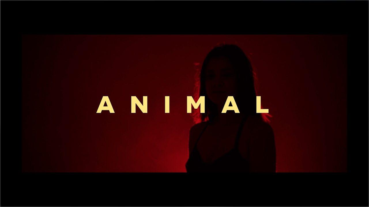 Sumera – Animal (Official Music Video) @sumeramusic