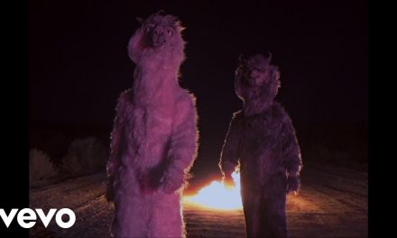 Fall Out Boy – The Last Of The Real Ones (Official Music Video)