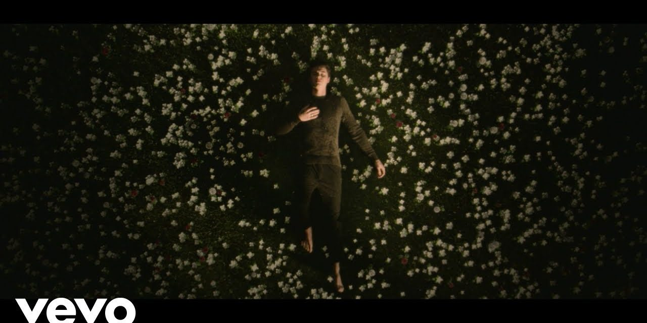Shawn Mendes – In My Blood (Official Music Video)